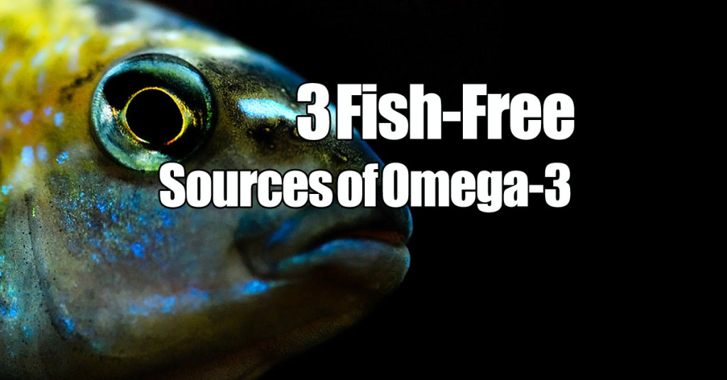 3 non fish sources of omega 3 very vegan recipes for Non fish omega 3