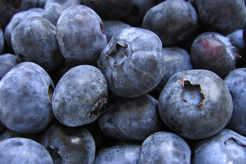 Blueberries Boost your memory with the help of blueberries which you can have a handful for popping as your midday snack or you can toss some of it as topping to your favorite desserts and salads. You can even have it as a shake, juice or any chilly beverage on a steamy afternoon. This tiny fruit is loaded with vitamins, minerals and antioxidants that help improve the functions of your brain.