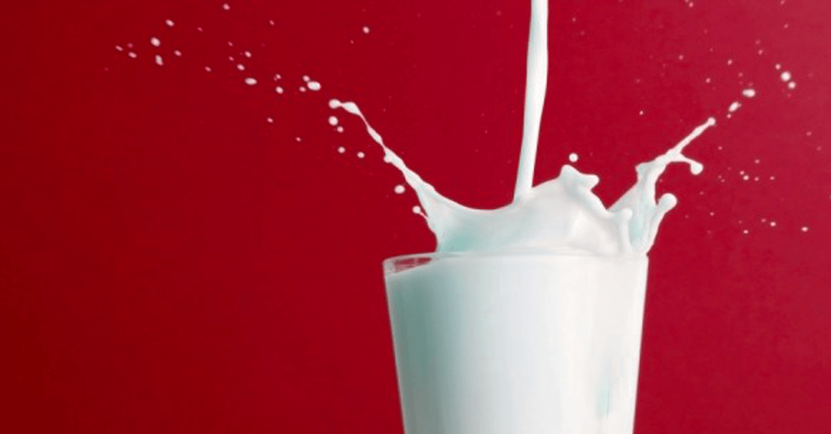 lies about milk and dairy vegan - 3 Preposterous Lies About Cows Milk