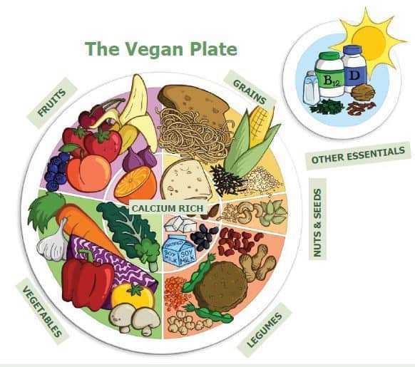 Nutrition Vegan Diet nutrients health