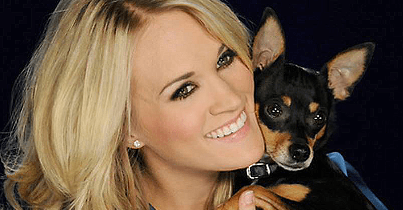 carrie underwood not vegan - Carrie Underwood Isn't Vegan So Why Does She Say She Is?
