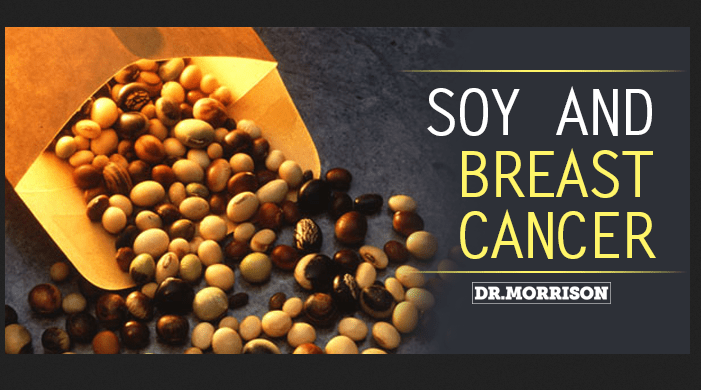 soy breast cancer research - Don't Fear Soy: Research Shows It's Beneficial For Breast Cancer