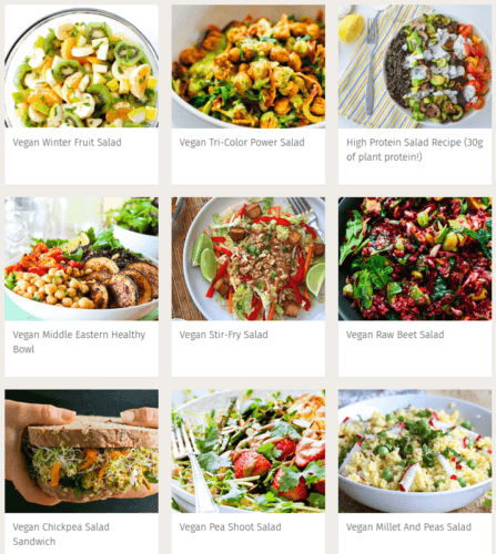 vegan salad recipes 447x500 - Vegan Burgers, Vegan Pasta, Vegan Salads