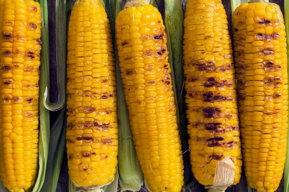 Grilled young corn as the background