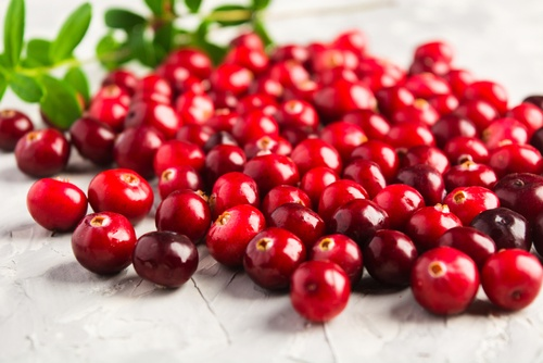 fresh cranberries depicting a healthy source of essential amino acids